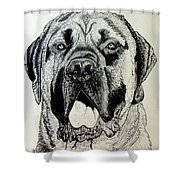 Mastiff Shower Curtain