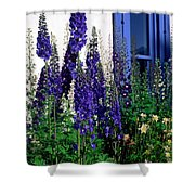Matching Flowers And  Window Shower Curtain