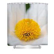Matilija One Shower Curtain