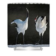 Mating Dance Shower Curtain