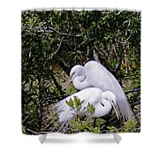 Mating Season Shower Curtain