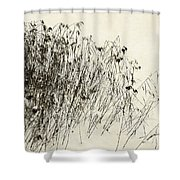Matsuo Basho Remembering Shower Curtain