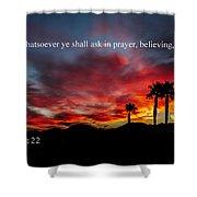 Matthew 21 Shower Curtain