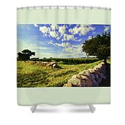 Matunuck Corn Fields Shower Curtain