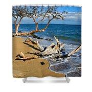 Maui Beach Dirftwood Fine Art Photography Print Shower Curtain