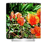 Maui Floral Shower Curtain