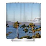 Maui Palms Shower Curtain
