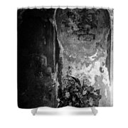 Mausoleum Flowers 2 Shower Curtain