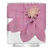 Mauve Flower Shower Curtain