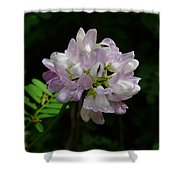 Mauve Flower Shower Curtain