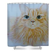Max  Shower Curtain