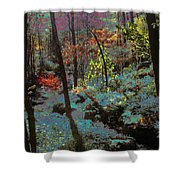 Maxfield Parrish Moment Shower Curtain