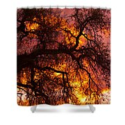 May One Sunset Shower Curtain
