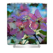 May Pastels Shower Curtain