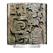 Mayan Glyph Shower Curtain