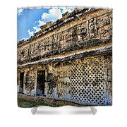 Mayan Graffiti  Shower Curtain