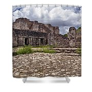 Mayan Ruins 1 Shower Curtain