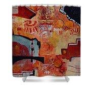 Mayan Shaman Shower Curtain