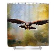Maybe - Hawk Art Shower Curtain