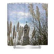 Mayflower Memorial Through The Pampas Grass Shower Curtain