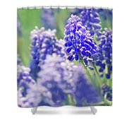 Maytime Shower Curtain