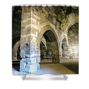 Maze Of Arches Shower Curtain