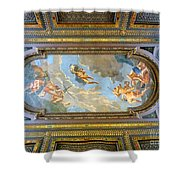 Mcgraw Rotunda Mural Shower Curtain