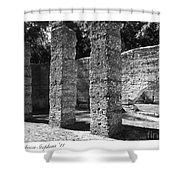 Mcintosh Sugar Mill Tabby Ruins 1825  Shower Curtain