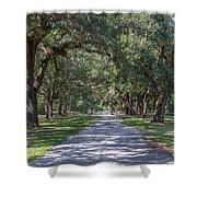 Mcleod Allee Shower Curtain