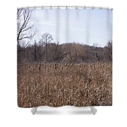 Meadow At Arnold Arboretum Shower Curtain
