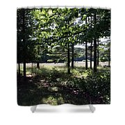 Meadow Beyond Shower Curtain