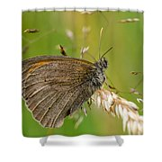 Meadow Brown Shower Curtain