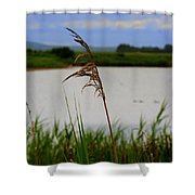 Meadow Grass Shower Curtain