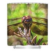 Meadow Hawk Dragonfly 2 Shower Curtain