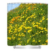 Meadow Hillside Poppy Flowers 8 Poppies Artwork Gifts Shower Curtain