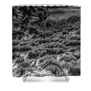 Meadow Of Montaigle Shower Curtain