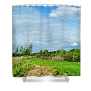 Meadow Road Shower Curtain