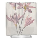 Meadow Saffron Shower Curtain