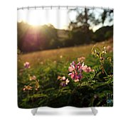 Meadow Sunset Shower Curtain