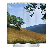 Meadow View Summer Shower Curtain