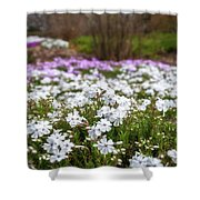 Meadow With Flowers At Botanic Garden In The Blue Mountains Shower Curtain