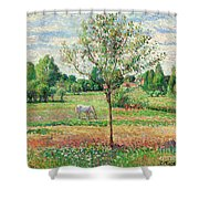Meadow With Grey Horse, Eragny Shower Curtain