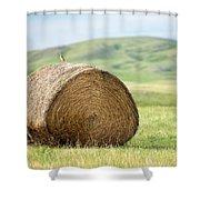 Meadowlark Heaven Shower Curtain