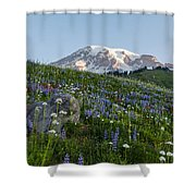 Meadows Of Glory Shower Curtain