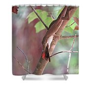 Mealtime Shower Curtain
