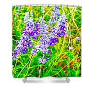 Mealy Blue Sage Shower Curtain