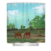 Meandering Mares Shower Curtain