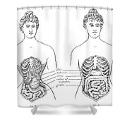 Medical Crimes Of The Corset, 1908 Shower Curtain