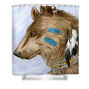 Medicine Bear Shower Curtain