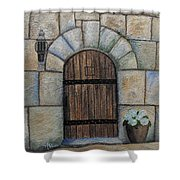 Medieval Door Shower Curtain